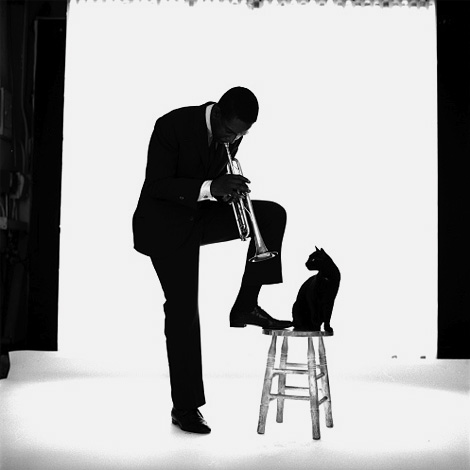 Kenny Dorham by Jerry Schatzberg