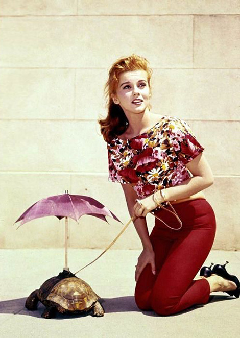 Ann-Margaret walking a turtle with an umbrella