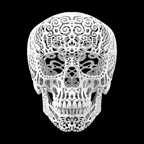 Joshua Harker: Crania Anatomica