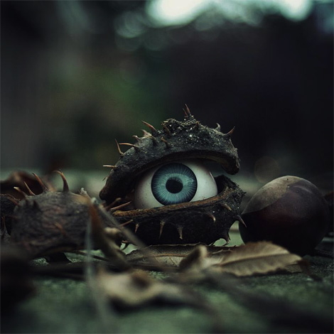 The trees have eyes by Simon Clarke