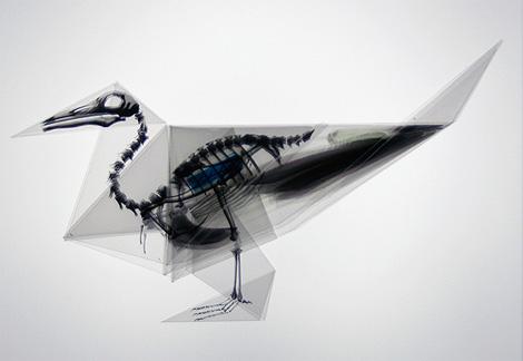 Takayuki Hori: Oritsunagumono