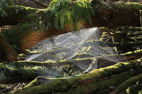 Yarn installation