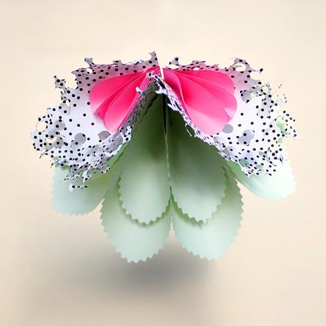 Sascha Nordmeyer: Paper Flowers