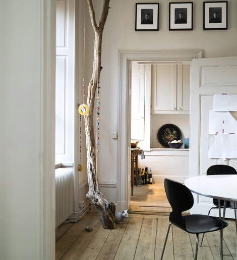 Trees and branches as decor