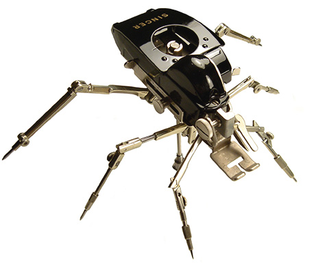 Singer insect