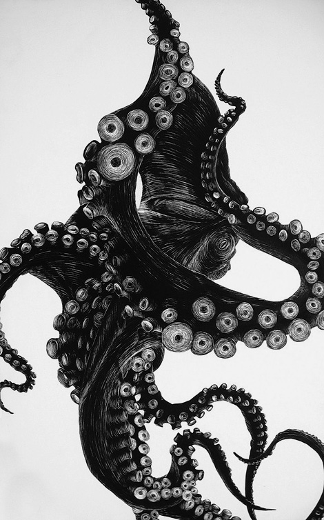 Mystery tentacles