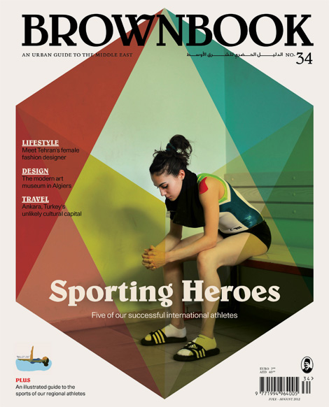 Brownbook #34