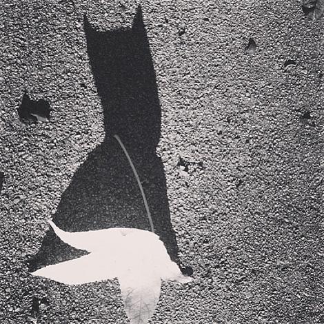 Holy Bat Signal