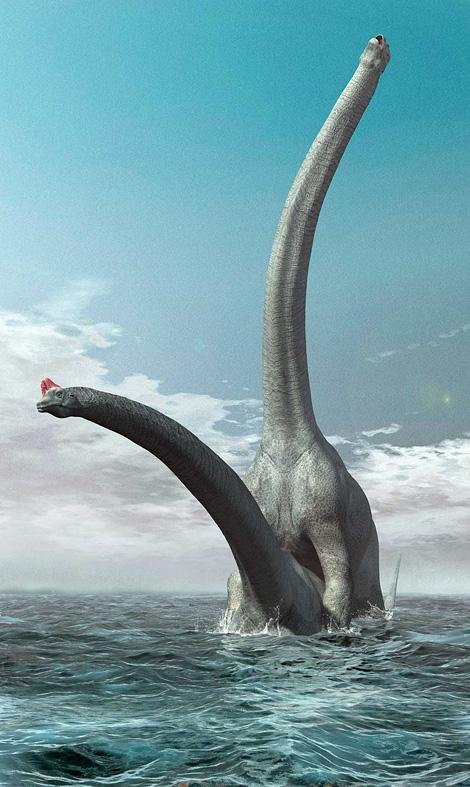 Brontosaurus Sex