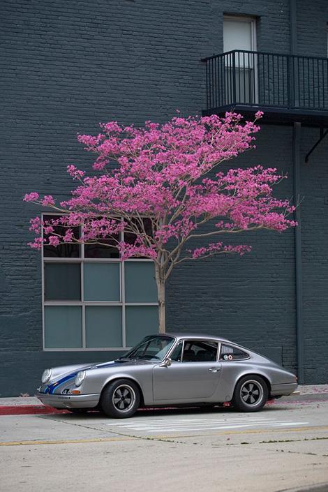 Porsche blossom