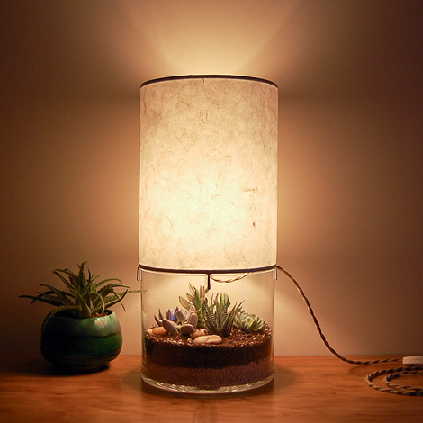 Terrarium Lamp