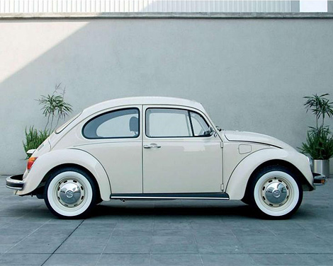 Last Edition Beetle