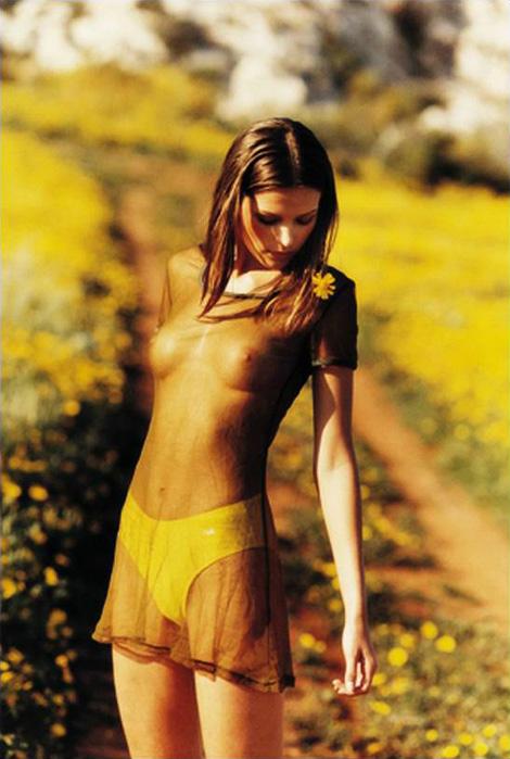 Wild about Saffron