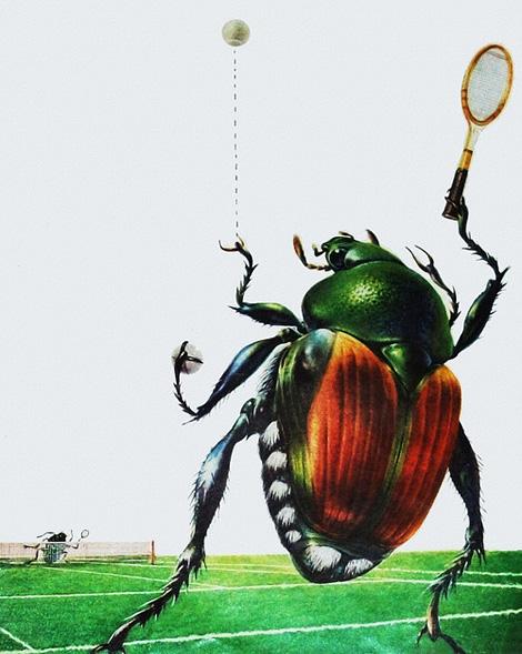 Japanese beetles playing tennis