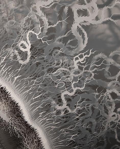 Microbe