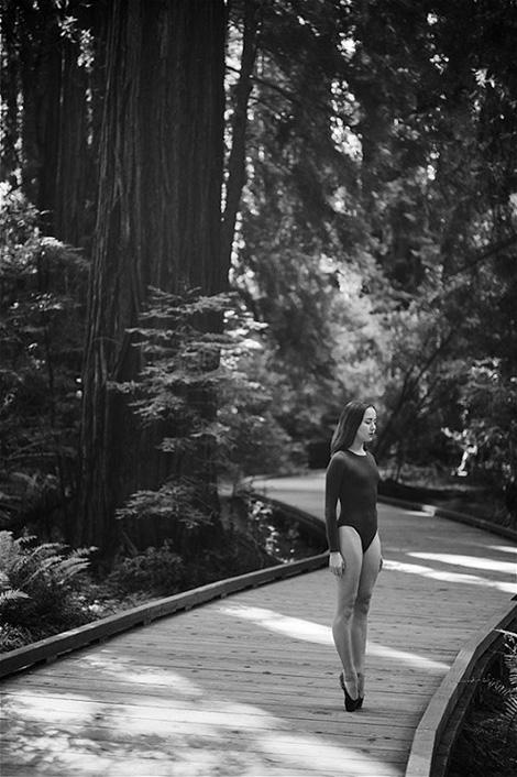 Miko – Muir Woods, California
