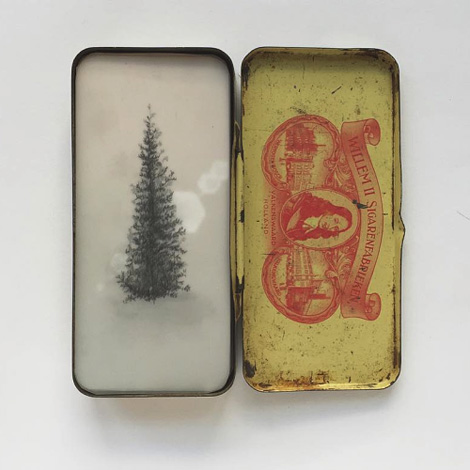Brooks Shane Salzwedel: Tins