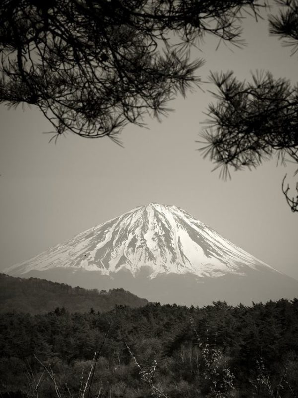Mount Fuji x Masahiko Kuroki