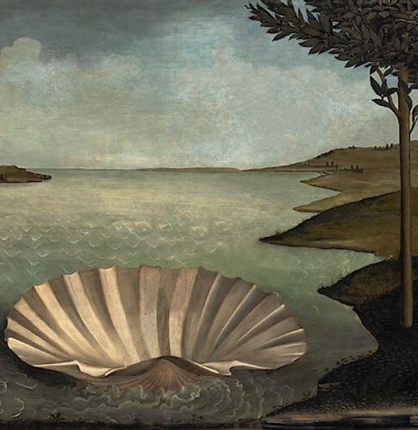 Birth of Venus x José Manuel Ballester