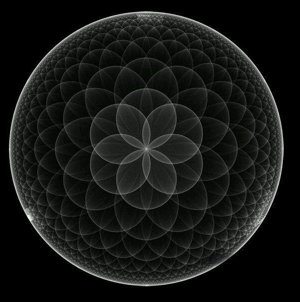 The Seed of Life