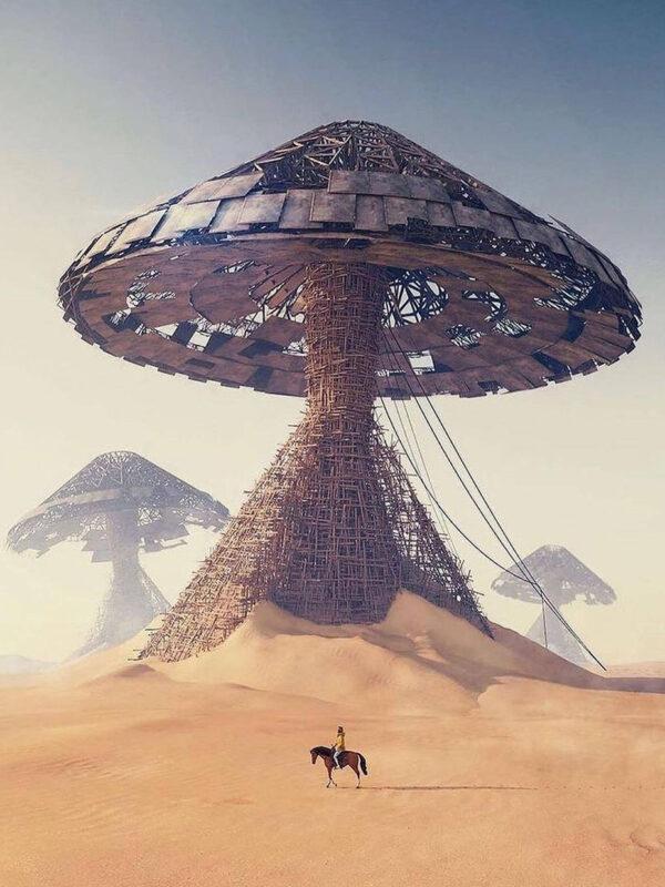Mushroom Desert x Rbnks