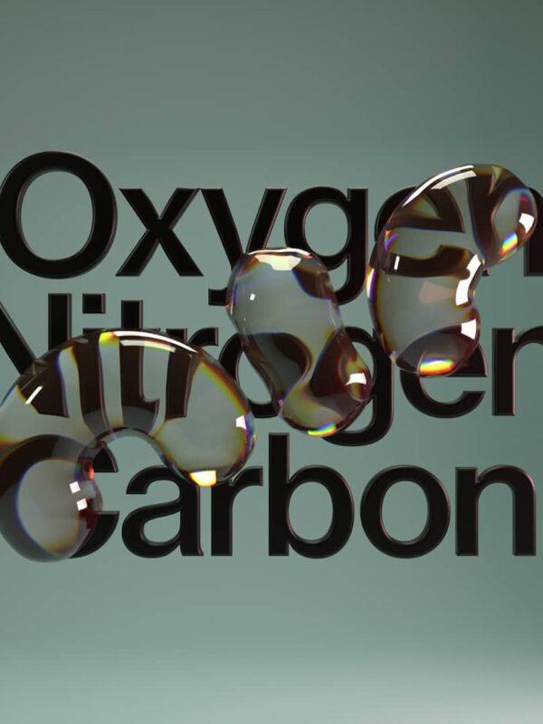Oxygen Nitrogen Carbon