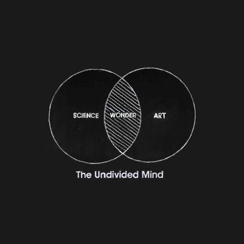 Undivided mind