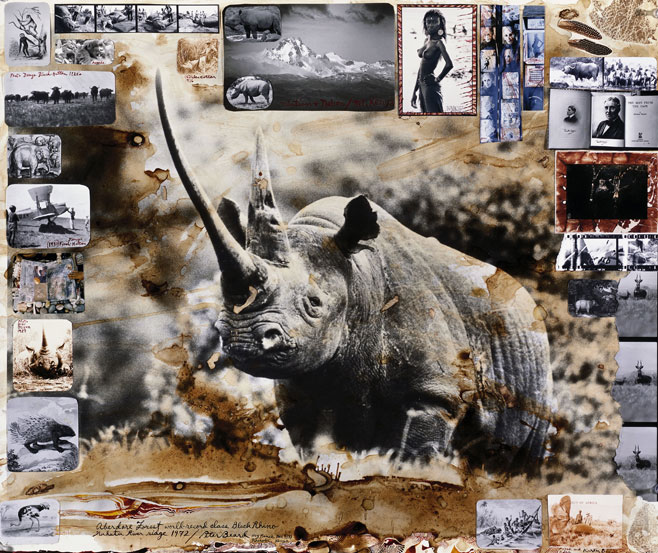 Peter Beard Collections