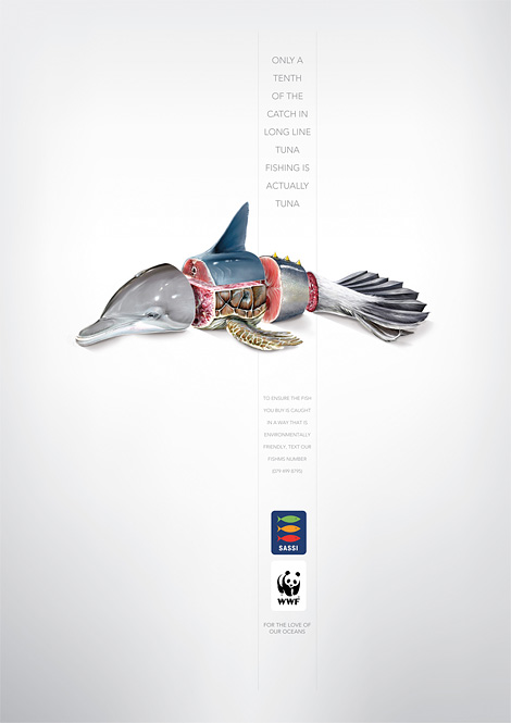 WWF & Sassi: Tuna